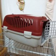cage for cat transportation
